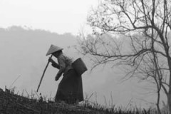Lao farming woman